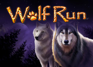 Wolf Run Slots Review